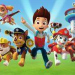【英語学習】カナダで人気の子供向けアニメをご紹介!これを見れば自然と英語を覚えるかも【パウパトロール】
